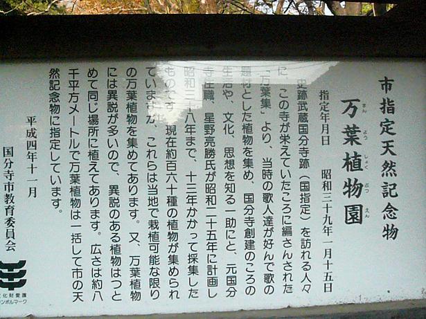 12.4万葉植物園