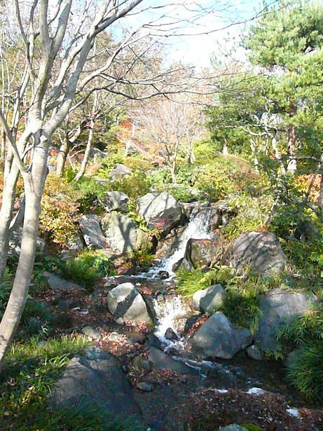 12.6日本庭園3