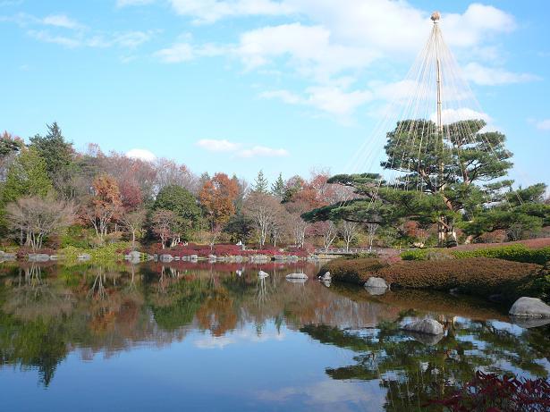 12.6日本庭園4