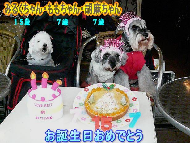 12.14おめでとう〜
