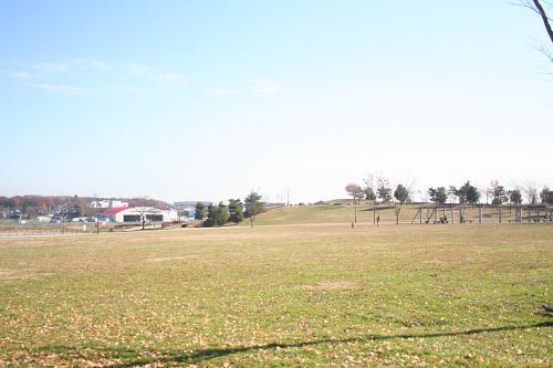 12.16武蔵野の森公園3