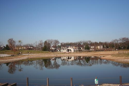 12.16修景池