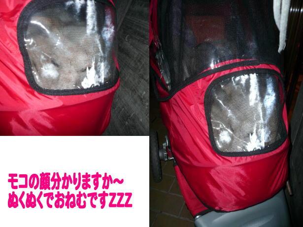 12.22寒いの・・・