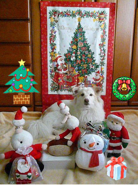12.23メリークリスマス1