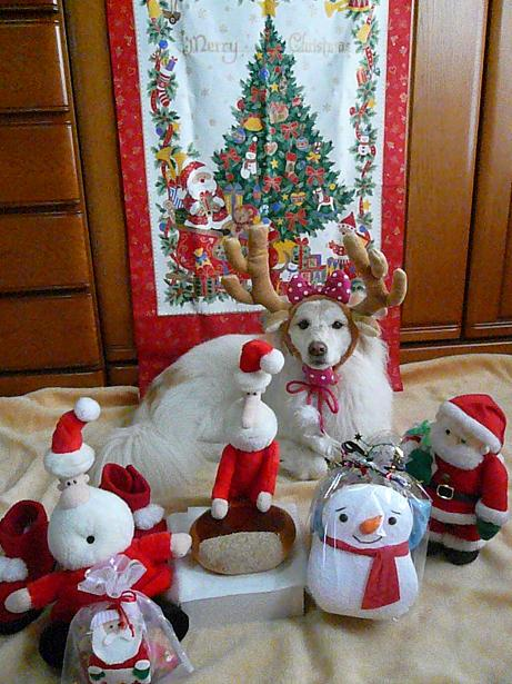 12.23メリークリスマス3
