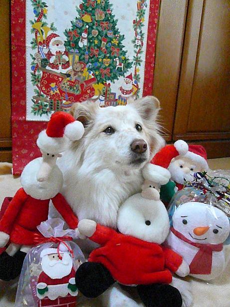 12.23メリークリスマス6