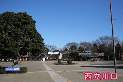 1.6昭和記念公園