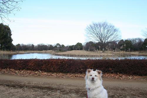 1.6池の前でパチリ