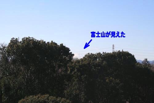 1.11富士山見えた