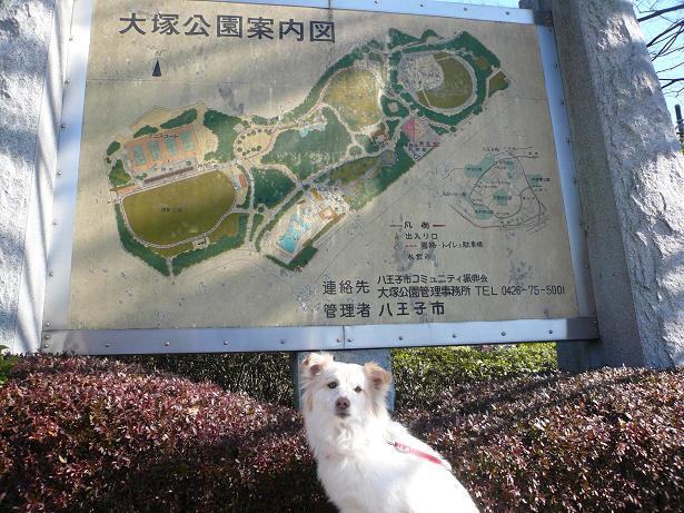 2.2大塚公園1