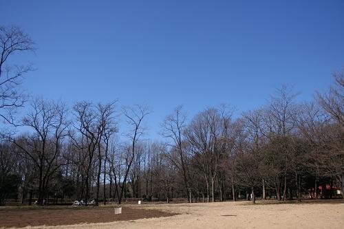 2.17小金井公園