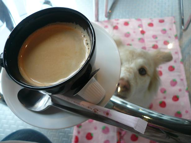2.24コーヒー