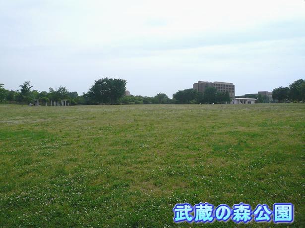 5.21武蔵の森公園