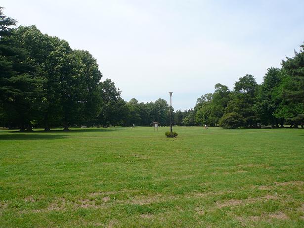 6.2野川公園