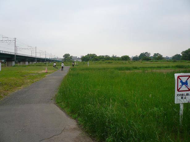 6.9河川敷