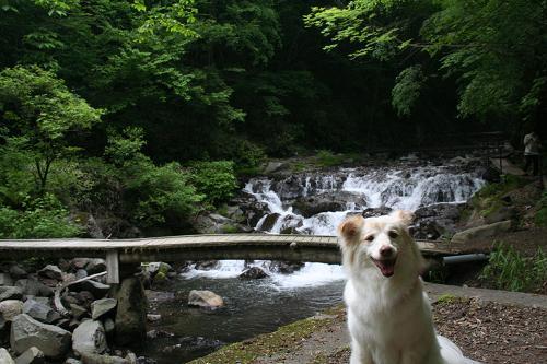 6.13浅間大滝3