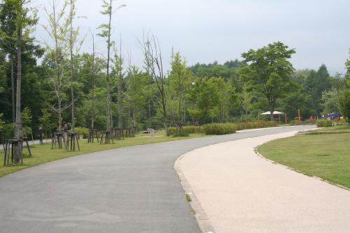 6.14湯川ふるさと公園3