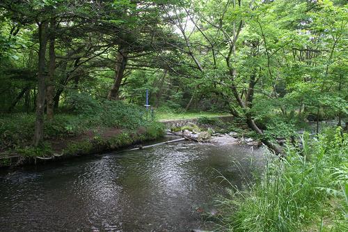 6.14公園脇には川2