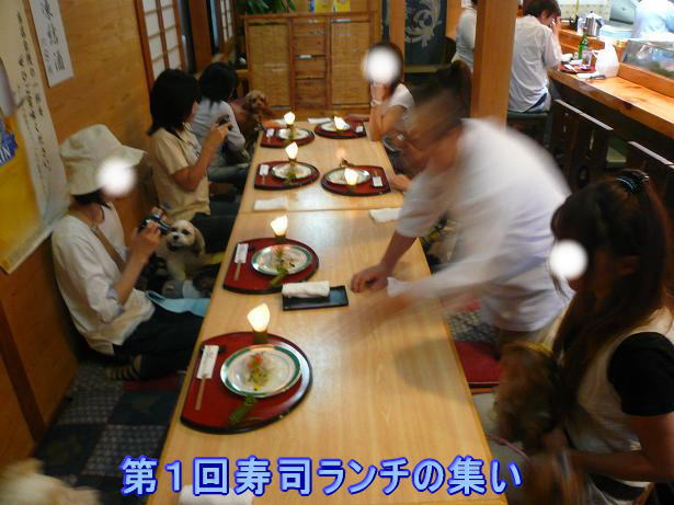 6.22第1回寿司ランチ