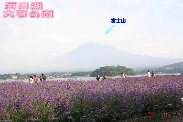 7.5大石公園2