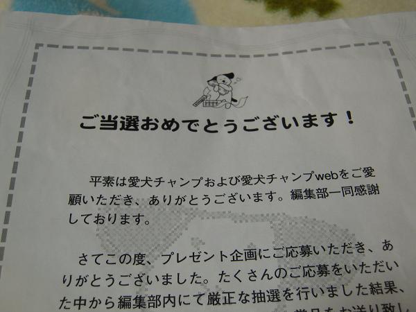 8.4当たった〜1