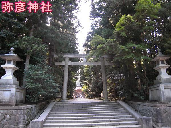 8.14弥彦神社1