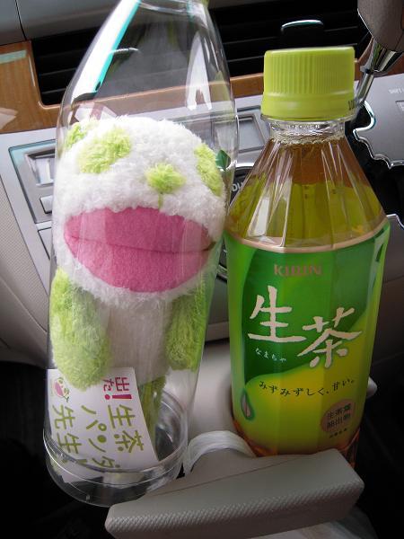 8.14生茶パンダ先生2