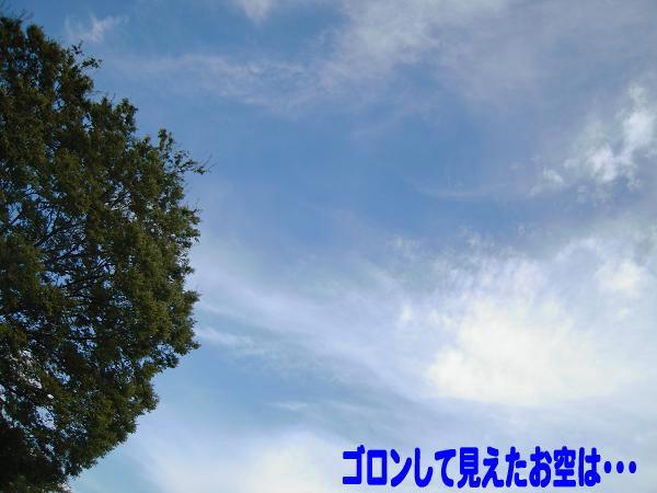 9.10真っ青