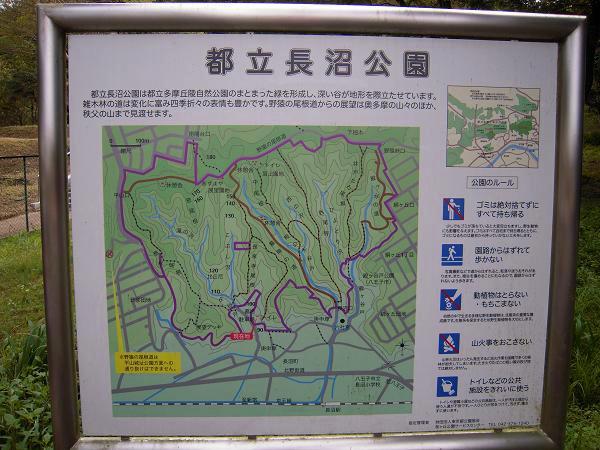 9.19長沼公園1