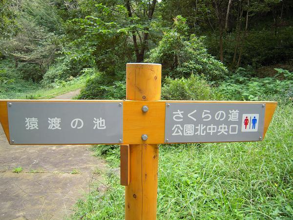 9.19平山城址公園3