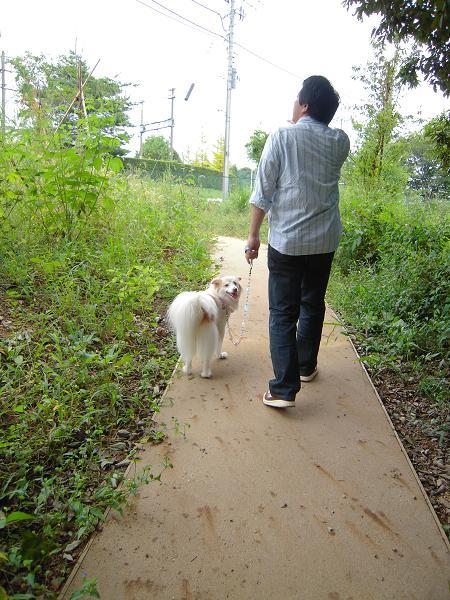 9.19お散歩2