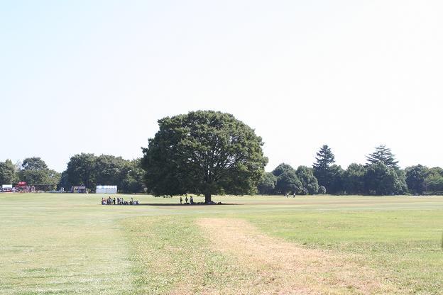 9.25昭和記念公園4