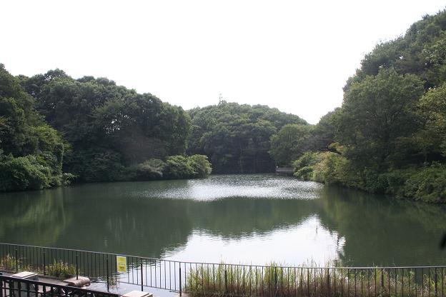 9.26長池公園2