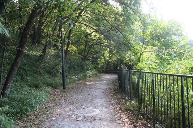 9.26長池公園4
