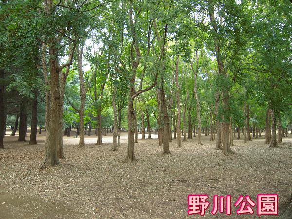 10.20野川公園