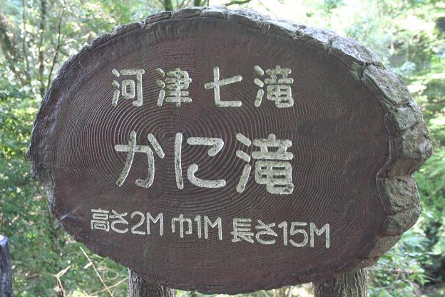 10.28河津七滝2
