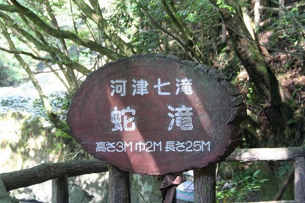 10.28河津七滝14