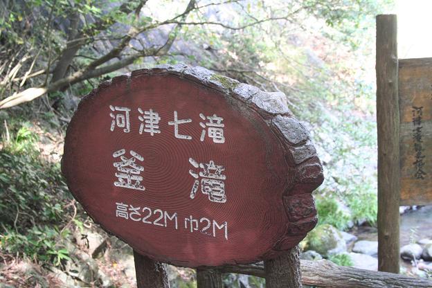 10.28河津七滝18