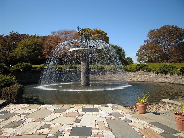 11.4昭和記念公園3