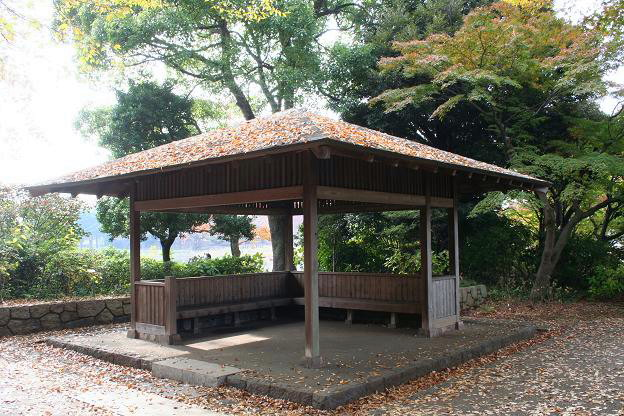 11.9昭和記念公園9