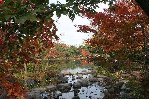 11.9日本庭園1
