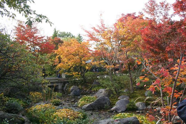 11.9日本庭園2