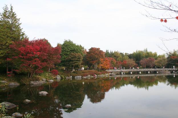 11.9日本庭園6
