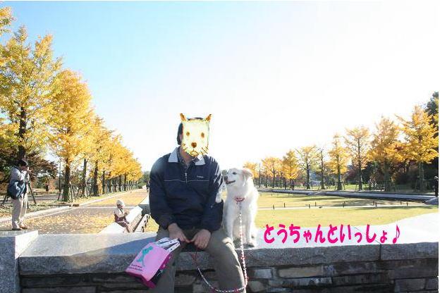11.15とうちゃんと一緒