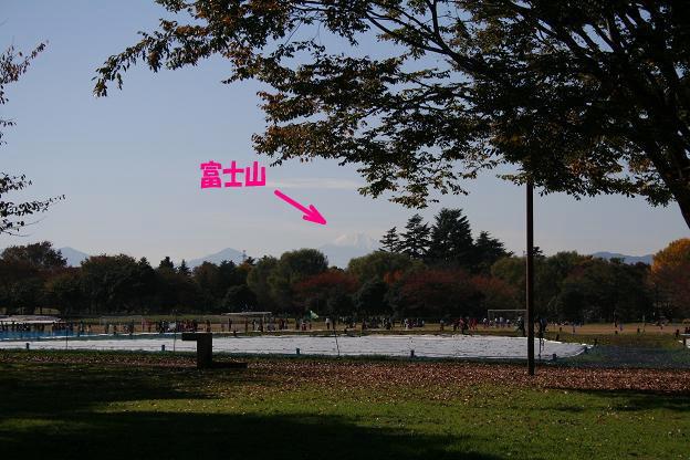 11.15富士山