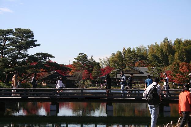 11.15日本庭園2
