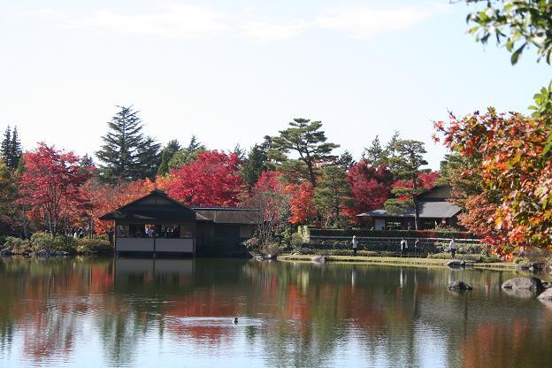 11.15日本庭園3