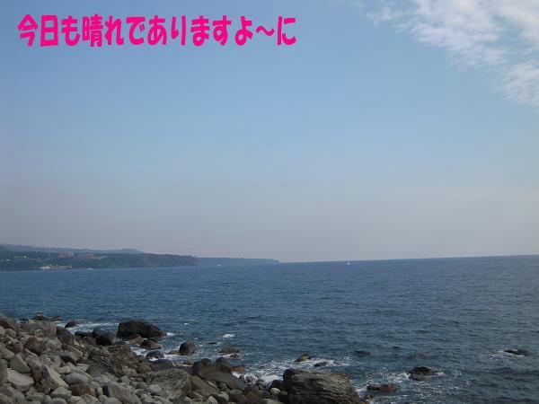 1.31今日もお天気・・・