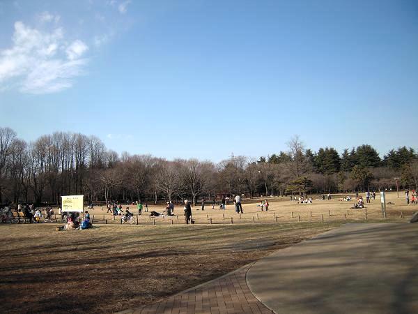 2.20小金井公園