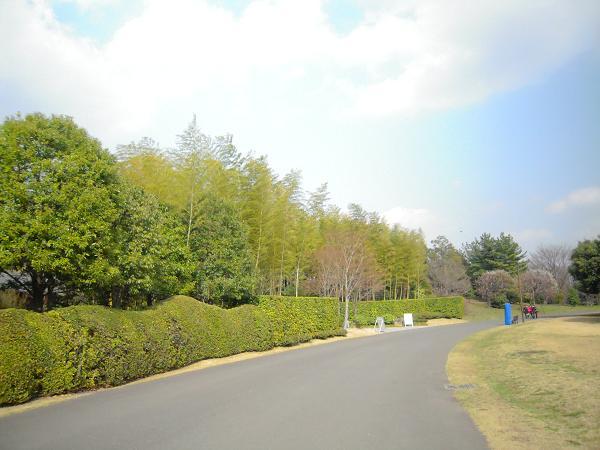 3.18昭和記念公園3